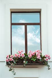 Buy flower boxes and get the best deals at the lowest prices on ebay! The Best Trailing Plants For Window Boxes Bless My Weeds