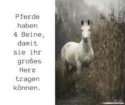 1001 Ideen Zum Thema Schöne Pferdebilder Und Pferdesprüche