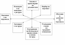 Връзки и взаимодействие между два от елементите на управление на  Всеки един от елементите в системата на управление на човешките ресурси се явява и своеобразен етап в цялостната процедура по набиране управление и