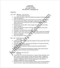 13+ Writer Resume Templates - Doc, Excel, Pdf | Free & Premium Templates