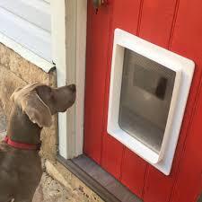 Dog Door Install-Sydney Wide Pet Doors