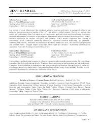 Federal Resume Cover Letter Example Cover Letter Example Federal