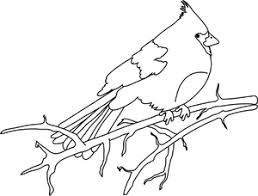 Small Picture Cardinal Clipart Image Bird Coloring Page of a Cardinal on a Tree
