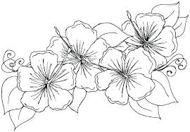 Flowers Coloring Pictures Spring Flowers Coloring Pages Flowers