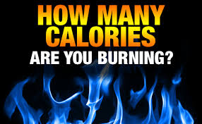 Are you burning calories everyday?