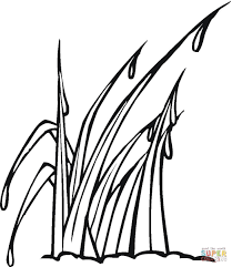 Small Picture Downloads Grass Coloring Page 61 On Gallery Coloring Ideas with