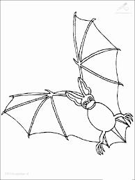 Vleermuis Kleurplaat Elegant Bat Kleurplaten Fris Kleurplaat