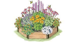 garden design planting plan for