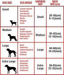 Dog Collar Size Chart Cm Google Search Dog Bandana Diy