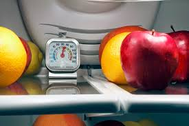 Extending the Shelf Life of Fridge Foods