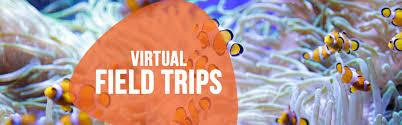 Virtual Field Trip - Ripley's Aquarium of Canada