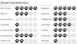 Dog Characteristics Chart Huskies Characteristic Chart Redbone Coonhound Pharaoh