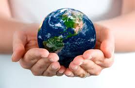 Состояние окружающей среды в Гомельской области Сильные Новости  Гомельская область считается территорией с самой высокой в Беларуси степенью сохранности природных комплексов Здесь много лесов 45%