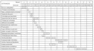 Formatos De Cronogramas De Actividades El Portal De La Tesis