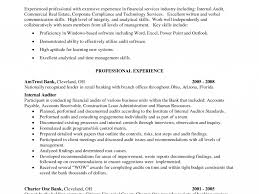 100 Internal Audit Resume India Resume Cost Control