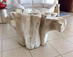 Coffee Table Tree Tree Root Coffee Table Australia Coffee Addicts