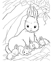 Small Picture bunny coloring pages for kids