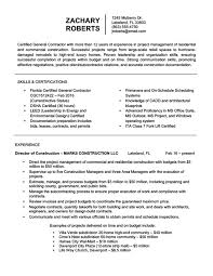 Resume Writing Examples Stunning Resume Writing Gallery Of Sample Resumes