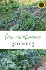 hire a gardener or trade for weeding while it s not ideal to have to pay someone to weed your garden because it s not cost effective sometimes if you get