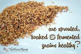 Are Sprouted, Soaked & Fermented Grains Healthy? | Wellness Mama