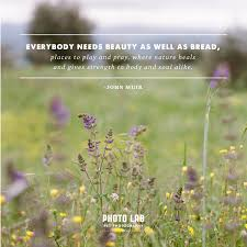 Earth Beauty Quotes Best of Tails From The Lab Earth Day Everyday 24 Favorite Quotes