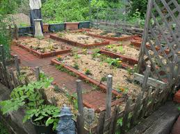 small diy patio vegetable garden house design with brick
