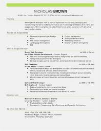 28 Resume Outline Examples Free Template Best Resume Templates