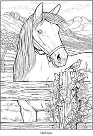 horse coloring book pages creative haven great horses coloring book 6 sle pages horse coloring pages free coloring ideas pro