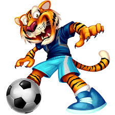 Image result for football images cartoon