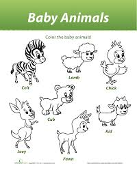 Small Picture Baby Animals Coloring Pages Games Coloring Coloring Pages