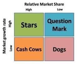 essay questions on the boston matrix boston product matrix business essay essay uk