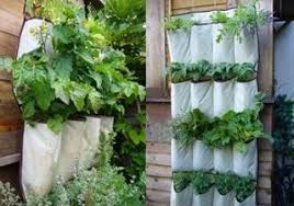 container gardening vegetables. Container-gardening-creative Container Gardening Vegetables S