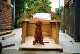 fun animals wiki s pictures stories dog houses and dog house plans