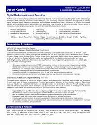 B2b Marketing Resume Sample Elegant Special Best Digital Marketing