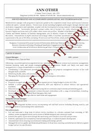 Senior Management Resume Examples Free Resume Example And