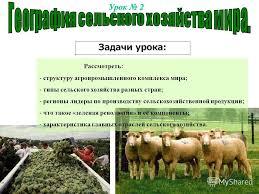 Презентация на тему География сельского хозяйства мира  1 Урок