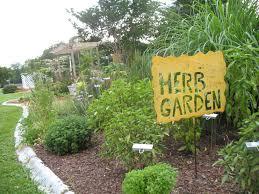 how to grow a herb garden. Herb Garden Escambia.ifas.ufl How To Grow A C
