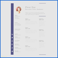 Mac Resume Templates Awesome Resume Template Apple Pages Apple Pages Resume Template Reference 48