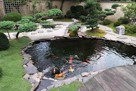 Manificent Decoration Fish Pond Design Adorable Small Koi In Garden For Ponds  Ideas