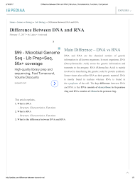 Pdf Difference Between Dna And Rna