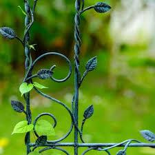do metal trellises burn plants