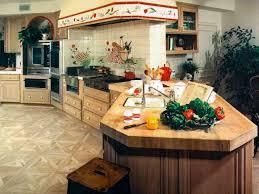 Chef's Kitchens HGTV Amazing Gourmet Kitchen Design Style