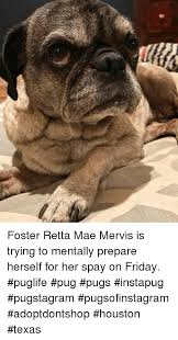 friday memes and houston foster retta mae mervis is trying to mentally prepare