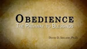 essay on obedience  essay on obedience