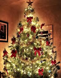 christmas trees decorated with red ribbon. Beautiful Ribbon Red Tree With Golden Glow In Christmas Trees Decorated With Red Ribbon T