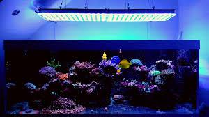 aquarium led lights orphek
