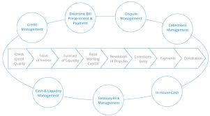 Treasury Process Flow Chart In Sap Best Picture Of Chart