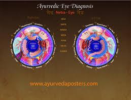 Iridology Diagnosis Chart Eye Diagnosis Iridology Chart 8 5 X 11