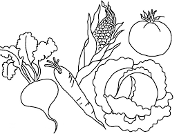 Small Picture red leafy vegetables parsley 2 healthy vegetables coloring page