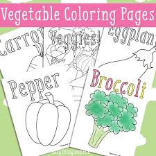 Carrot, cabbage, broad bean, broccoli, corn, green. Vegetables Coloring Pages Free Printable Easy Peasy And Fun